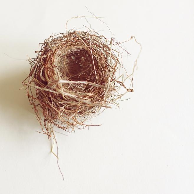 nest 2 blog